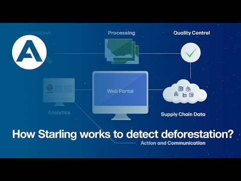 How Starling works to detect deforestation?