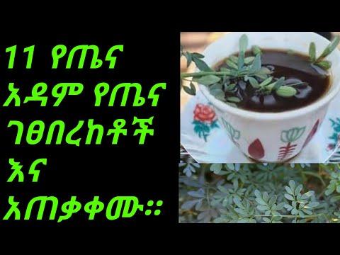 Ethiopia: የጤናዳም 11 የጤና ጥቅሞች እና ከነአዘገጃጀቱ።