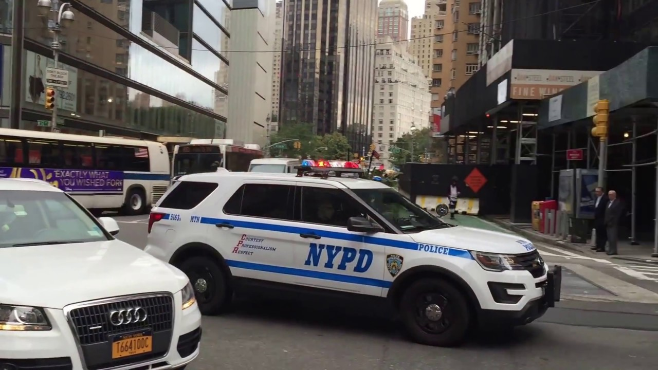 In new york city, lawmakers seek to reform nypd's sex crimes unit