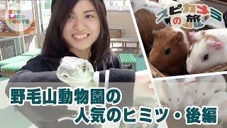 『スピカメラの旅』/ STOLABO TOKYO『スピカの夜』のメインMCである、島...