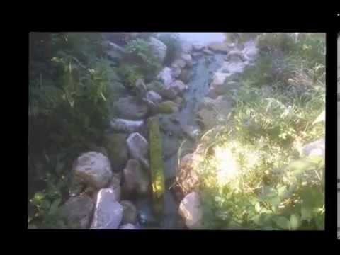 String Algae Removal In Your Pond Using Sodium Percarbonate Youtube