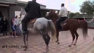 Танцующая Лошадь. (Свадьба Брата)