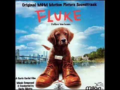 Fluke OST 18. Forever/The Squirrel