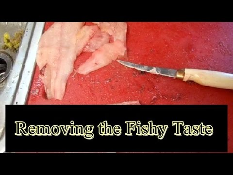 Removing The Fishy Taste From Catfish How To