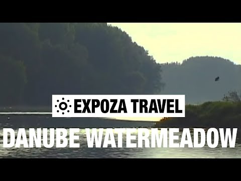 Danube Watermeadow (Austria) Vacation Travel Video Guide