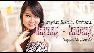 Download lagu Tepen N.S - Dangdut indung - indung Remix 2018