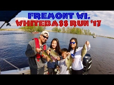 Whitebass fishing spring 39 17 fremont wolf river wi youtube for Fremont wi fishing report