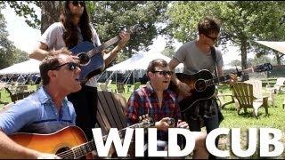 Wild Cub