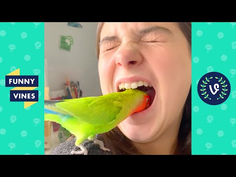 """SHE DID THAT?! 😱"" 
