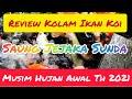Review Kolam Ikan Koi Di Musim Hujan Awal Th  Saung Jejaka Sunda  Mp3 - Mp4 Download