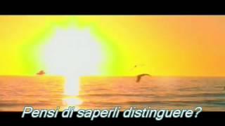 Pink Floyd - Wish you were here - testo italiano traduzione