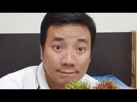 [Live] Sài gòn MƯA LỚN NGẬP LÊNH LÁNG - Ngồi nhà ăn ChômChôm GIÁ RẺ BẤT NGỜ 35.000VND 1KG ĐẦU MÙA