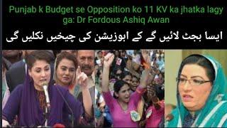 Budget-2021- 22 | Punjab k Budget se Opposition ko 11 KV ka jhatka lagy ga: Dr Fordous Ashiq Awan..