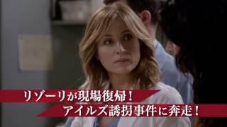 リゾーリ&アイルズ シーズン6 第13話