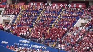 2017 千葉大会決勝 習志野 応援メドレー thumbnail