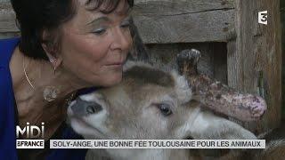 ANIMAUX : Soly-Ange, une bonne fée Toulousaine pour les animaux