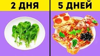 Что Такое Интервальное Голодание и Как Оно Помогает Сбросить Вес