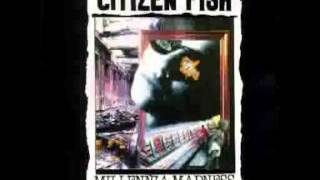 Watch Citizen Fish Friends video