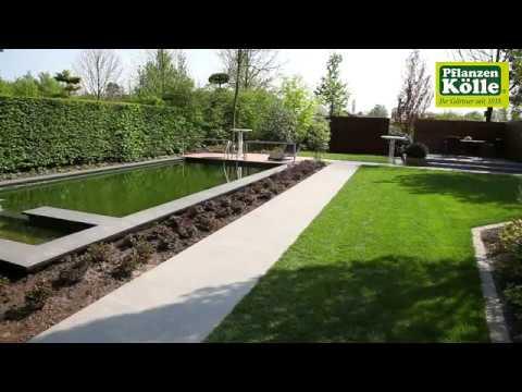 Gartengestaltung Poolgarten I Pflanzen-Kölle