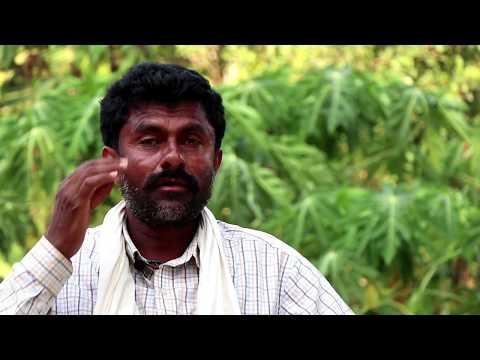 Integrated Farming I Success story of a Shepherd I Sri. Muttanna Pujar
