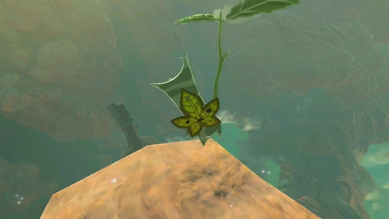 Zelda Breath Of The Wild Korok Seeds Eldin Tower