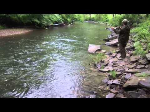Trout fishing pocahontas wv 2013 youtube for West virginia out of state fishing license