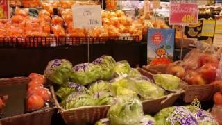 هذا الصباح-شركة يابانية تطور مزرعة للخضراوات