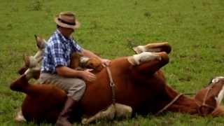 """Doma india en Sierras Bayas caballo """"El Capitán"""" (1° parte)"""