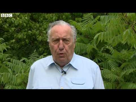 BBC News Frederick Forsyth  My days as an MI6 spy