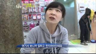 TV동물농장-못된 어미 엘리!(503회)_12
