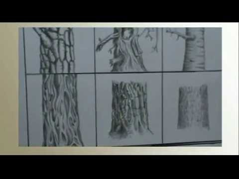 Preferenza Come imparare a disegnare un albero - YouTube GT27