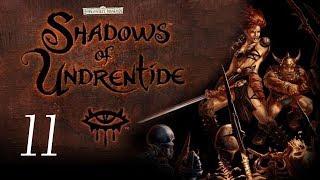 Neverwinter Nights: Shadows of Undrentide - 11 - Deekin