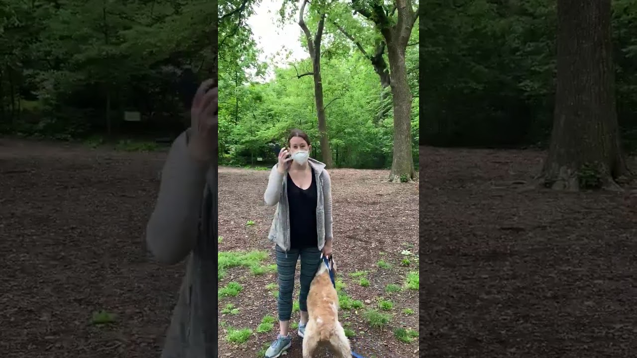 Woman placed on leave from work after viral Central Park video