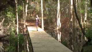 Eagle Endurance Swamp Stomp ultra 50 mile run adult A.D.H.D. (my story part one)