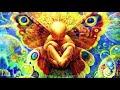 Lil Sokz - Newborn (Chillstep Reggae Beat 2017 / Beautiful Life Beat / Reggae Instrumental Song)