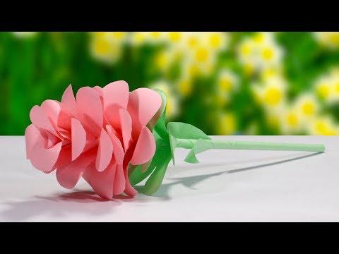 DIY Paper Flower - Beautiful Paper Flower Designs - Paper Flower Craft Ideas 2019
