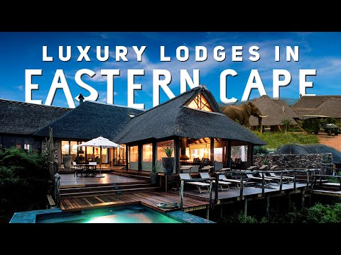 Luxury Lodges in Eastern Cape | South Africa