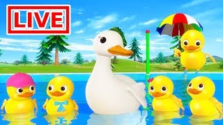 Five Little Ducks, Wheels on the Bus and MORE - Nursery Rhymes for Kids LIVE