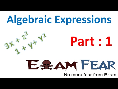 Maths Algebraic Expressions part 1 (Introduction) CBSE Class 8 Mathematics VIII