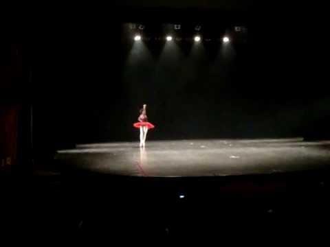 Ingrid Silva Variacao  Don Quixote