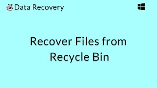Data Recovery (Windows): Recover Deleted Files from an Empty Recycle Bin