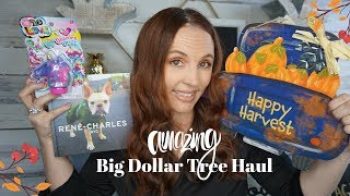 Dollar Tree Haul July 27 2019!!! Amazing New Finds