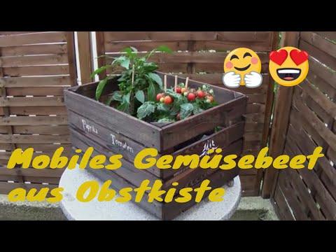 Mobiles Gemüsebeet aus Obst/ Weinkiste DIY