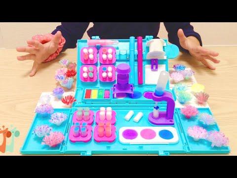 お花のような カラフルポンポンが作れる 海外おもちゃ / Pom Pom Wow Snap and Decorate Set : DIY