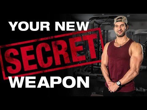 Vince Delmonte Effektiver Muskelaufbau Pdf