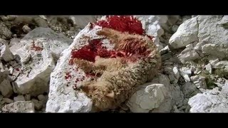 İnsanlara insanlık dersi veren Ayı filmi izle Ayı – L'Ours Türkçe Dublaj