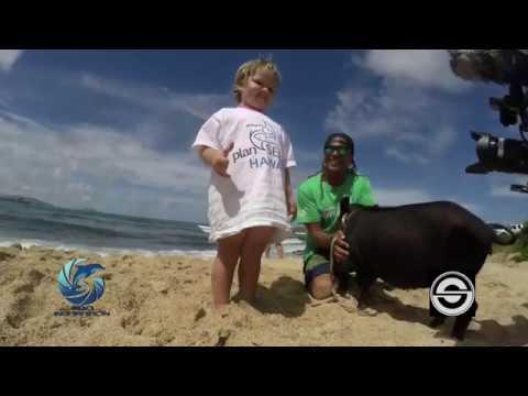 Ellie Meets Kama the Pig