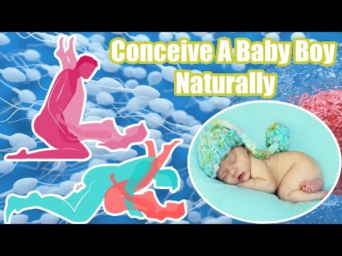 Conceive A Baby Boy Naturally | 3 Easy Ways To conceive a baby boy
