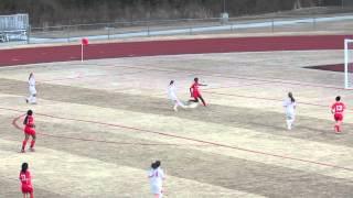 LHS JVG 2014 Game 3 001 clip