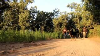 Strain Hunters Morocco Hungarian Subtitles